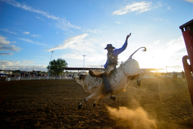 Robert Mims of Bryan, TX competes in the bull riding portion of the National Senior Pro Rodeo on Tuesday July 5, 2016 at O.L McMains JR. Arena in Grants, Nm. Mims finished second.
