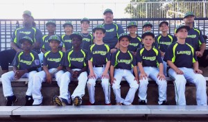 2016 Laurens 9-10 LL Minors All-Stars