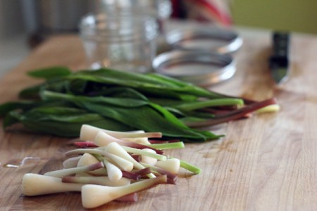 ramps: pickle prep