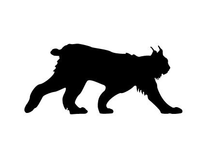 DT-114 Lynx(Bobcat) Shadow Pattern