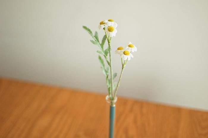 Botanical pen / Chamomile
