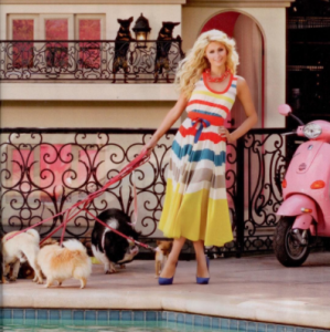Paris Hilton Dog Mansion 4