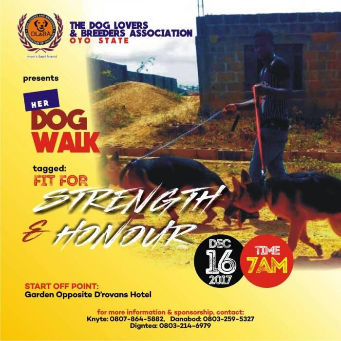 OYO DOG WALK 1