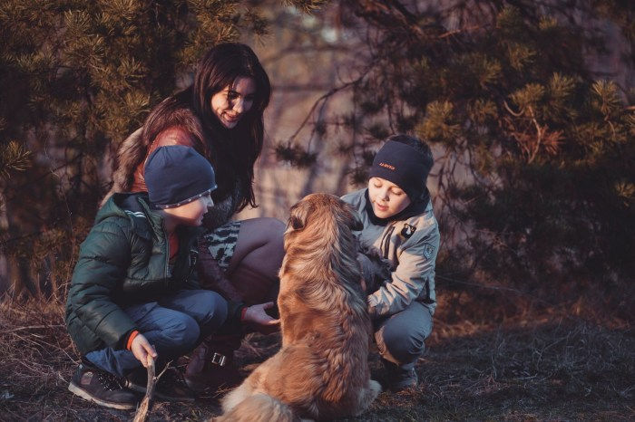 Is It Easy For Children to Relate With New Pet Dogs 2