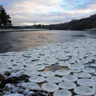 Mysterious Ice Pancakes