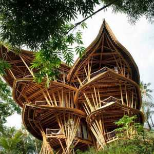 Incredible Bamboo houses in Indonesia