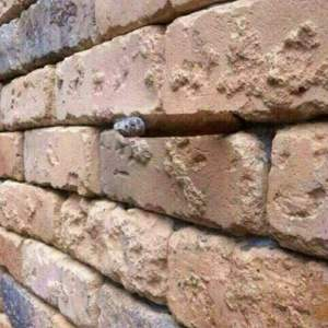 The amazing Brick Wall Illusion