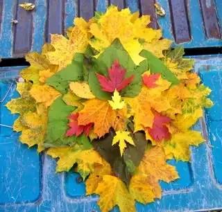 Fall_topv111_topv222_955_h