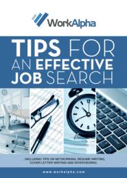 Job Search eBook