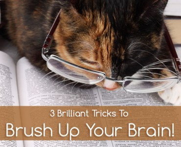 methods to sharpen your dull brain