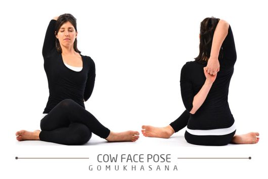 cow-face-pose