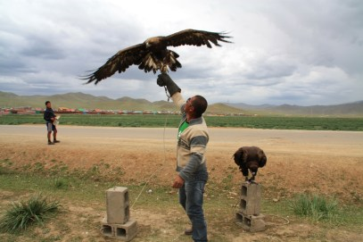 Get a picture taken with the eagles for 3000 tugrik