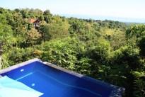 Puri Mangga Jungle House View