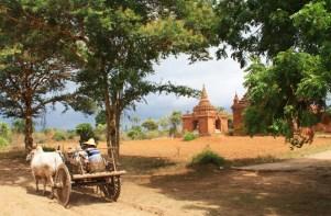 Bagan Temples 18 Horse cart