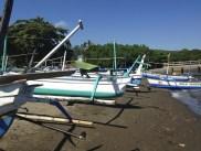 Lovina Boats