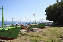 Lovina Green Boats