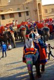 Amer Fort Elephant Ride David Bill