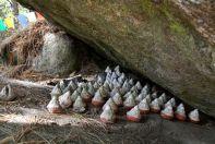 Bhutan Tigers Nest Stupas