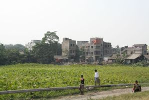 Calcutta India Farm