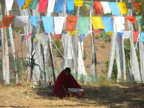 Chimi Lhakhang Monk Bhutan