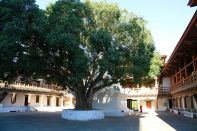 Punakha Dzong Bhutan Courtyard 2