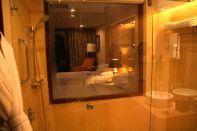 Sheraton Udaipur Shower