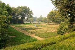 Trident Agra Garden