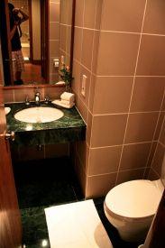 Trident Agra Guest Bathroom