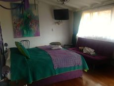 Andean Wings Suite