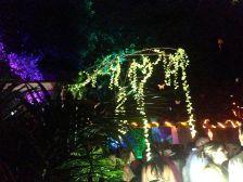 Garden of Delights Dance Floor New Years in Cartagena