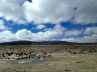 Imata Stone Forest Drive View