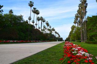 Algiers Le Jardin d'Essai du Hamma Red Flowers