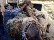 Loading pelts onto donkeys