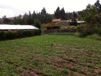 Las Casitas del Colca Farm