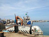 Port de BouHaroun Boat