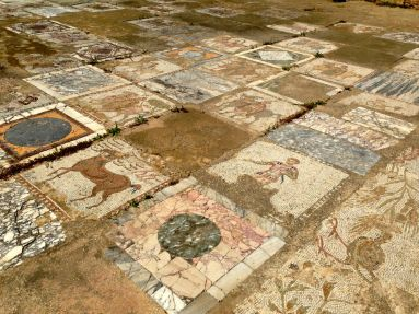 Carthage Villas Mosaics Well Preserved