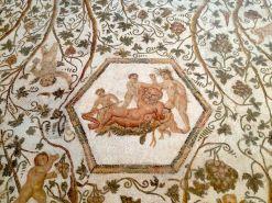 El Djem Museum Mosaic Detail