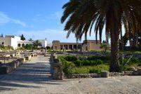 El Djem Museum Villa Ruins View