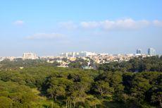 Hilton Alger View