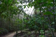 Guembe Biocenter Butterfly Enclosure