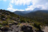 Kilimanjaro Mandara Hut Hike View 2
