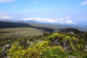 Kilimanjaro Mandara Hut Hike View