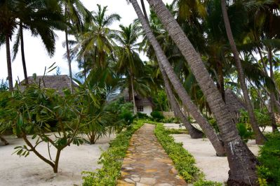 The pathway in the resort