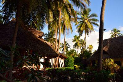 Next Paradise Zanzibar Roof