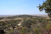 Serengeti Main Office