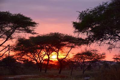 Sunsets over the Serengeti