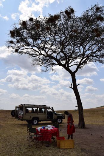 Maasai Mara Bush Picnic Set up