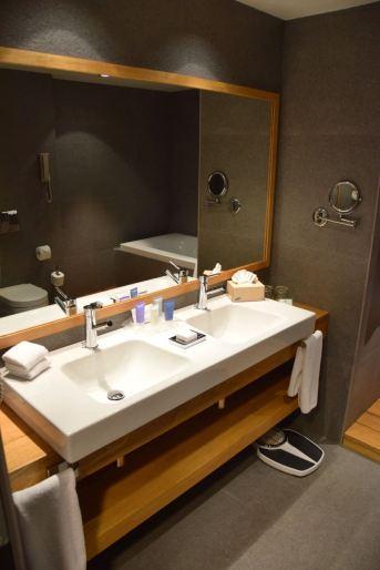 Holiday Inn Tbilisi Room Sinks