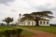 Kampala Mengo Palace Tree