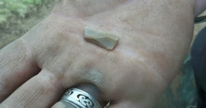 This tiny axe blade was found near the body of the male individual. It is presumed to have been both a weapon and a tool.